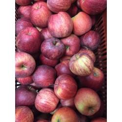 Pommes GALA  BIO (1 kg)