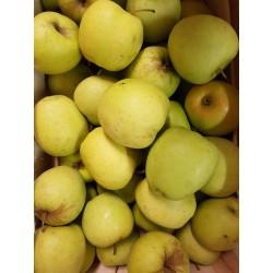 """Pommes """"Golden"""" (500g)"""