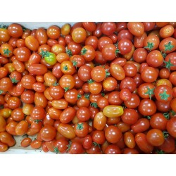 Tomate cerise (500g)
