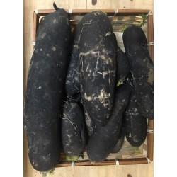 Radis Noir (400g)