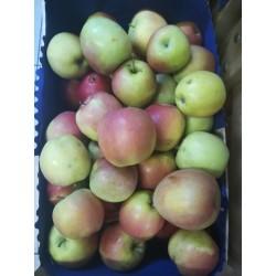 Pommes ''Fudji'' (environ 1kg)