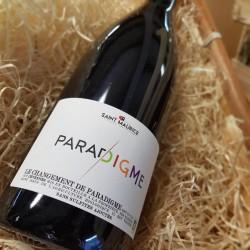 """Vin blanc BIO Moelleux ''Le temps des Chataignes"""""""