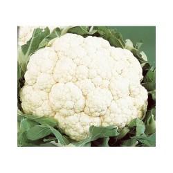 Chou fleur (environ 1kg)